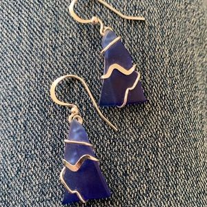 Dark Blue & Goldtone Earrings